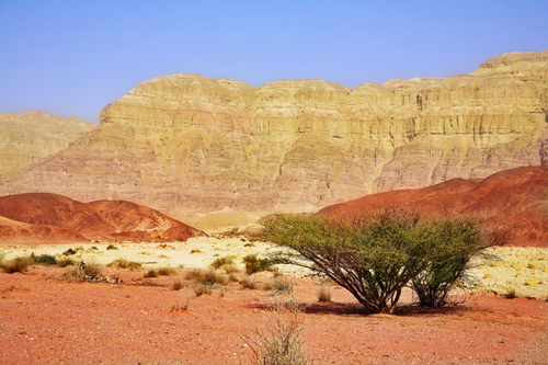 Unique park Timna in desert Arava near to the well-known sea resort Eilat